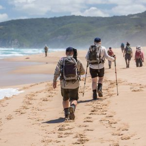 Walk along beautiful Victorian beaches with Great Walks of Australia on the Twelve Apostles Lodge Walk.