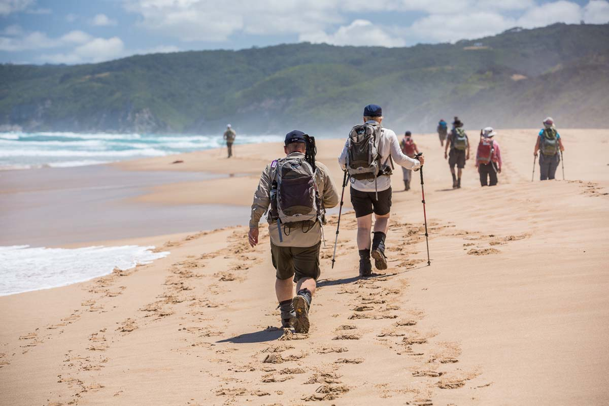 Walk along beautiful Victorian beaches with Great Walks of Australia on the Twelve Apostles Lodge Walk.