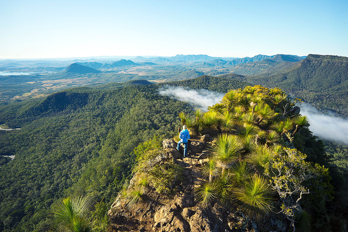 Climb to the summit of Mount Mitchell for stunning views of the Scenic Rim in Queensland.